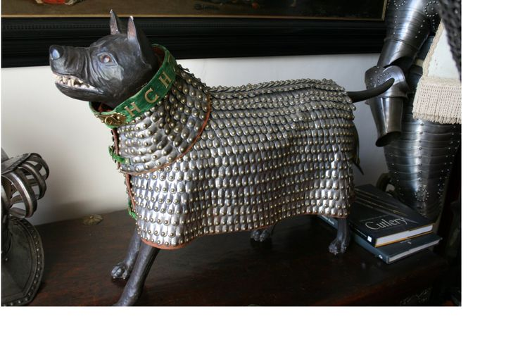 Ancient Roman dog armor. The Romans did use dogs in war.