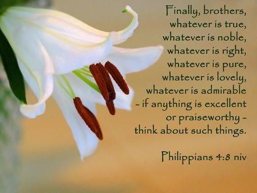 Philippians 4:8 photo Philippians4-8.jpg