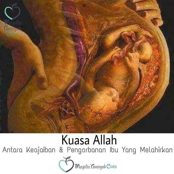 Persalinan adalah proses keluarnya janin dari dalam rahim ke dunia luar.  Proses Persalinan dapat dilakukan melalui jalan lahir/vagina (persalinan pervaginam) atau persalinan melalui sayatan pada dinding perut dan dinding rahim (persalinan perabdominam) atau dikenal dengan bedah sesar (seksio sesarea). Pada manusia 90 % persalinan dapat dilakukan melalui jalan lahir hanya sebagian kecil yang membutuhkan persalinan melalui operasi/ bedah sesar.  rahim-ibu-melahirkanRahim ibu yang sedang…