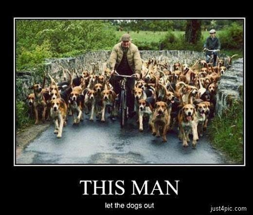 "whose been singing ""who let the dogs out""..."