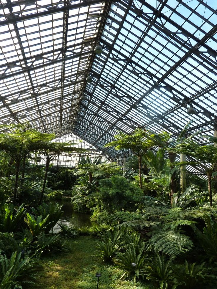 Garfield Park Conservatory  300 North Central Park Avenue Before Jens Jensen (1860-1951) came along most greenhouses were like museums. They consisted of vast quantities of potted plants arranged in impressive though uninspiring displays