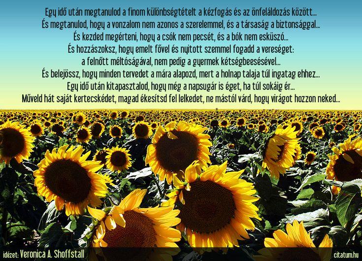 Veronica A. Shoffstall idézet az önállóságról.