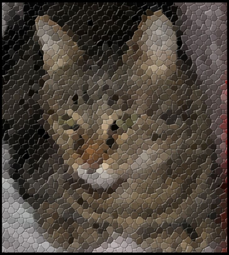 Mosaic of a Cat