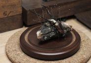 kebel-li-beetles-on-a-branch-designboom-11