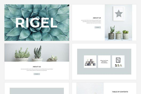 Rigel Presentation Template - Presentations
