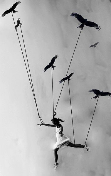 The birds taught her how to fly, and she's was the one who thought so less of them.