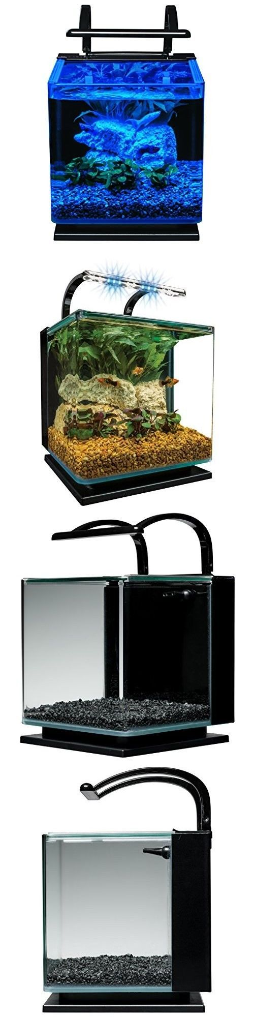 17 best ideas about 3 gallon fish tank on pinterest for 2 gallon betta fish tank