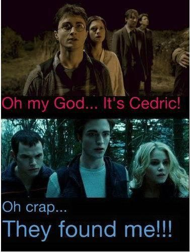 Harry is not a Hufflepuff, he shouldn't be finding things, right? Cedric is the one who's a particularly good finder.