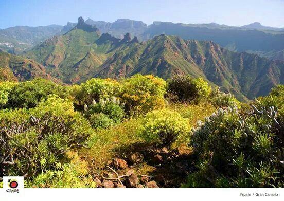 Gran Canaria. Roque Nublo