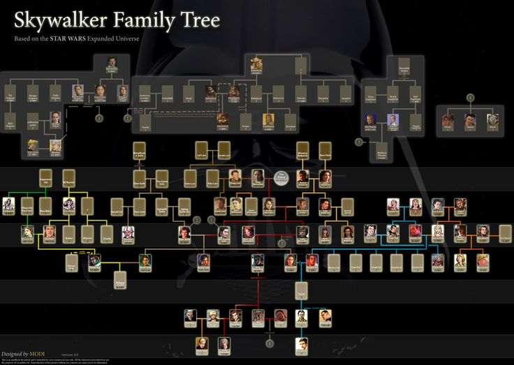 Skywalker family tree even more expanded.