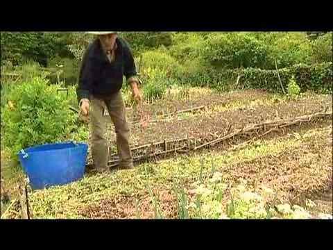 Jardin du Marais.Yves Gillen. jardinage sans travail du sol.