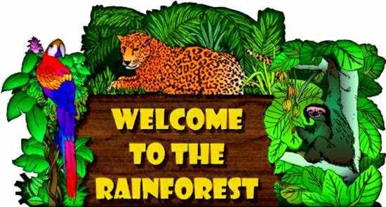 Rainforest unit....lots of ideas, books, etc