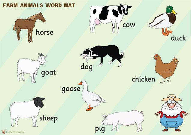 Farm animals pictures for preschool