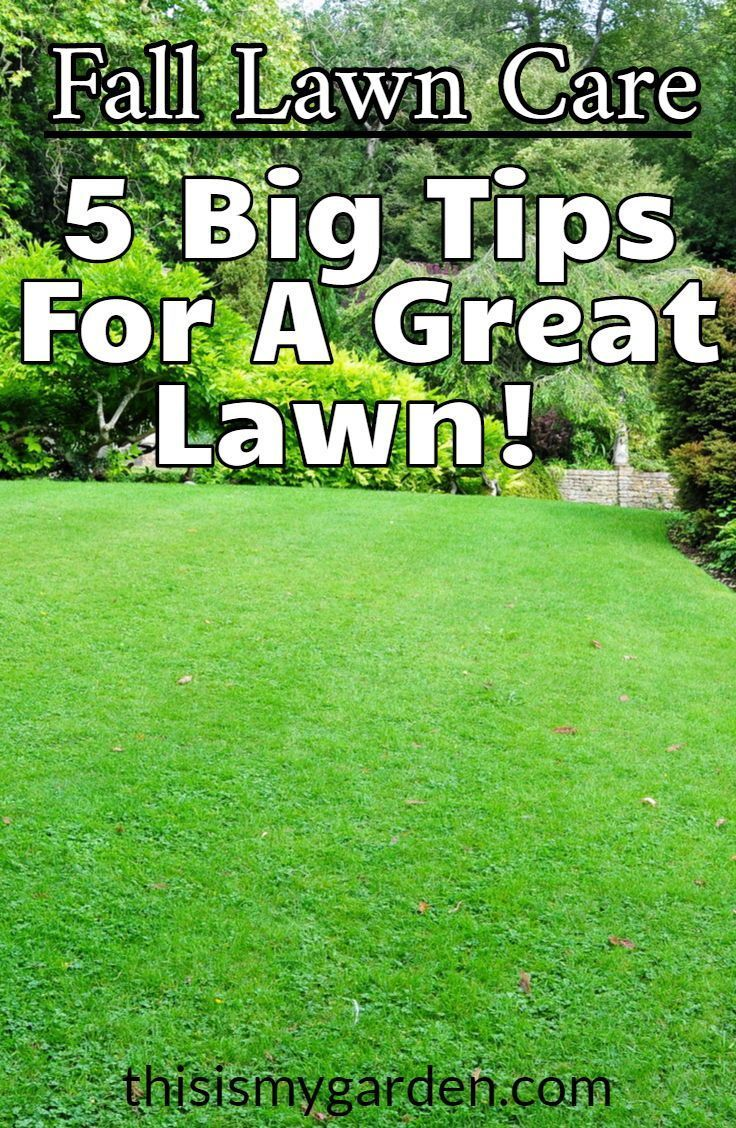 Get Inspired With These Fresh Landscaping Ideas In 2020 Fall Lawn Care Fall Lawn Lawn Care
