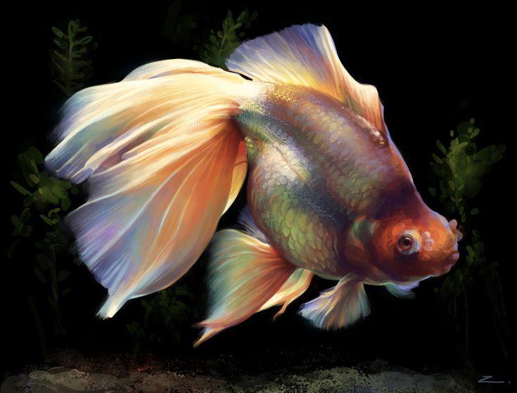 Goldfish by ~zhuzhu on deviantART