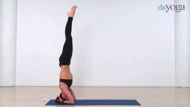 Детокс виньяса йога для активного очищения организма.  #дайога #dayoga #йога #yoga #уроки #видео #красота #асана #фитнес #спор