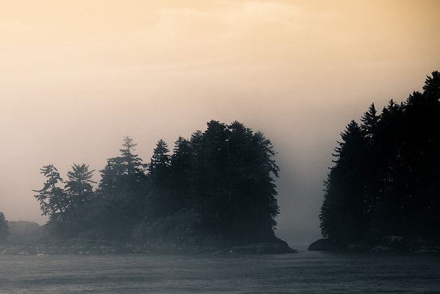 Ucluelet in the fog! Foggy Isles by coastalcreature on Flickr.