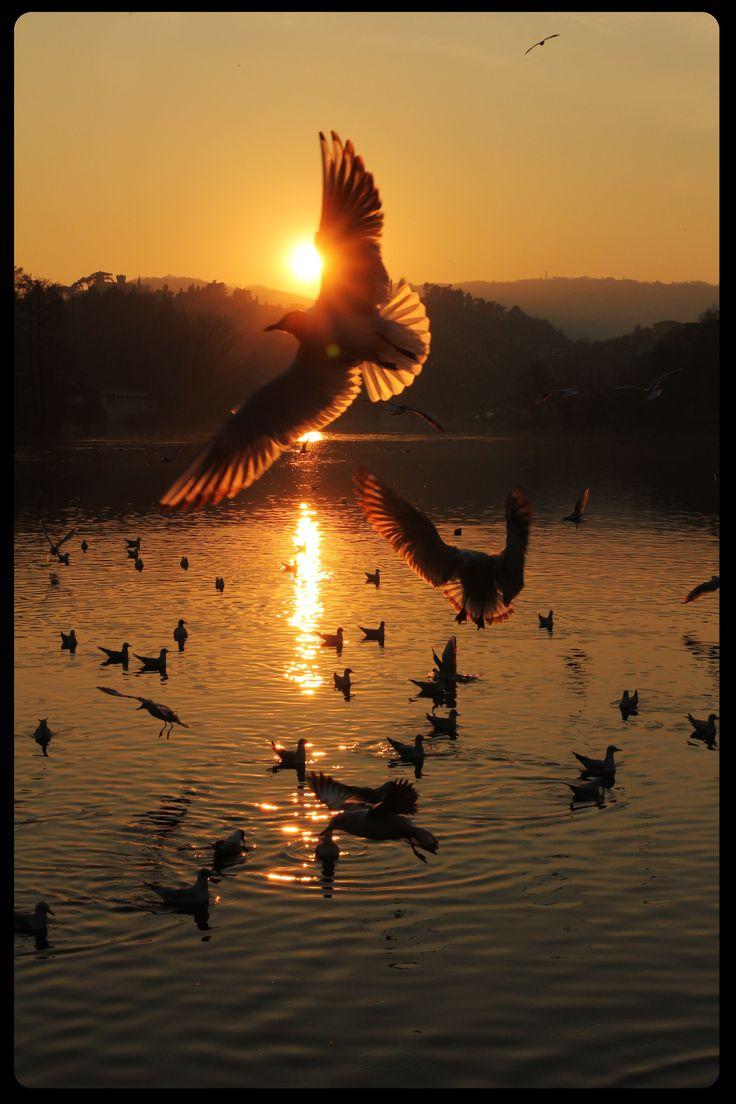 Sunset Sarnico