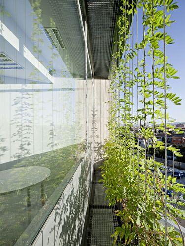 MM-arquitectura — Ampliación del Centro de Investigaciones Biomédicas.  #greendesign #greenwall #designinspiration