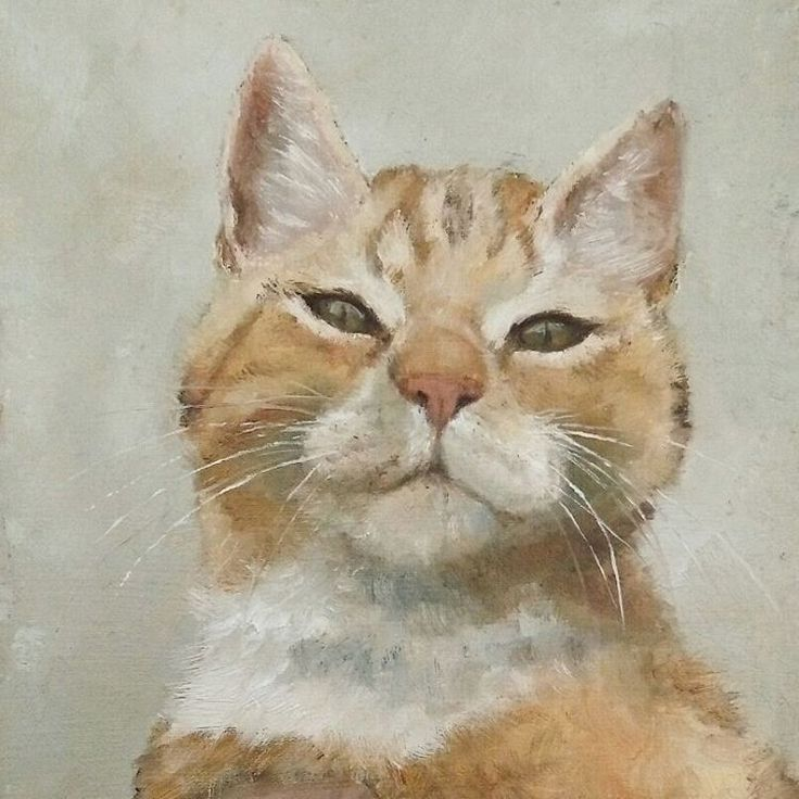 My muse of the week (month, year and always) 😺  • if you would like to purchase one of my paintings, drawings or if you have an idea for a commission, feel free to send me a DM. •   #art #oilpainting #painting #sketch #cat #redcat #catstagram #catsofinstagram #fineart #kunst #kat #schilderij #malerei #muse #olieverf