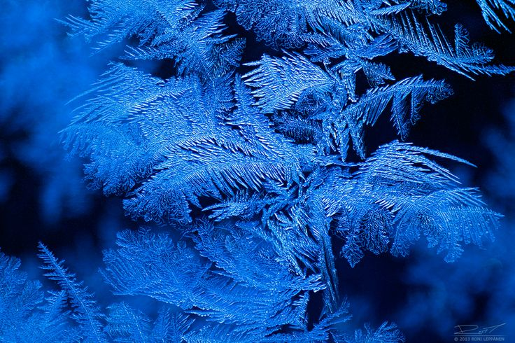 Winter Night and Sky by Roni Leppänen on 500px