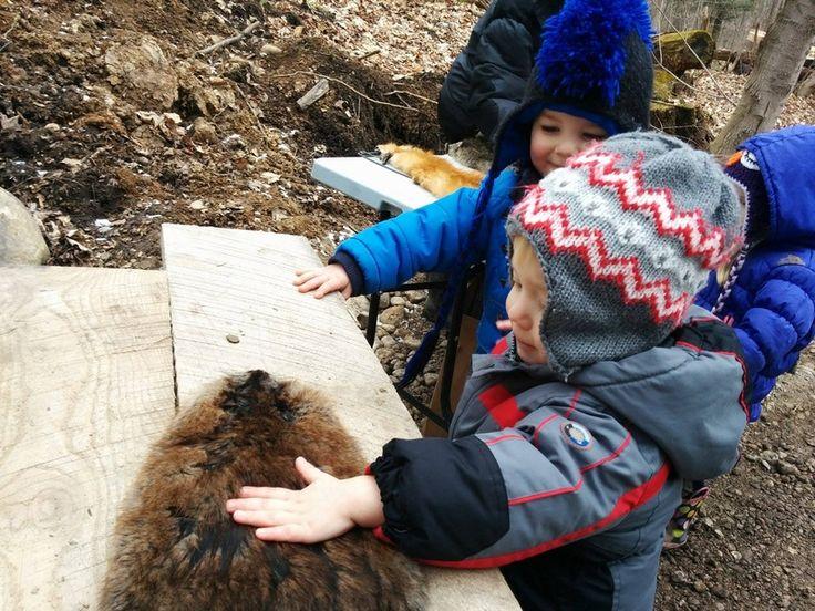 LOCAL: Blyth Creek Maple Farm - sugar bush tours, wagon rides, pioneer events
