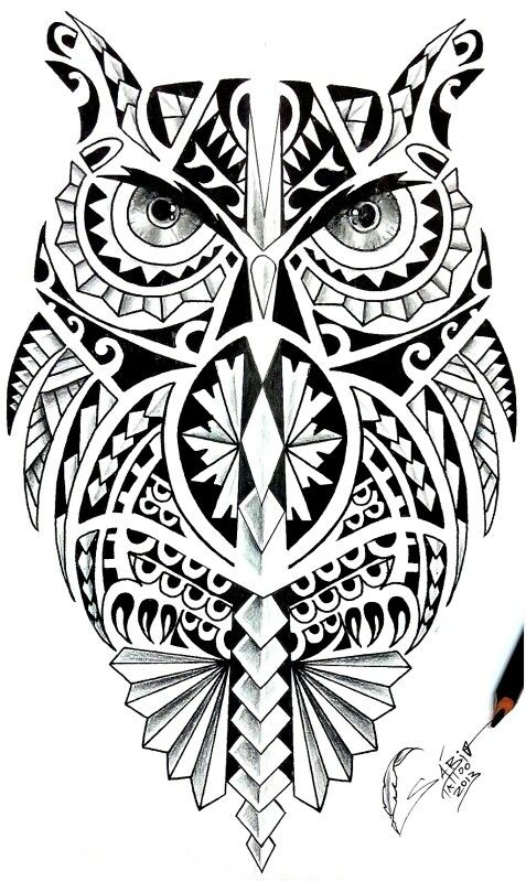 25  Best Ideas About Maori Coruja On Pinterest Tatuagem