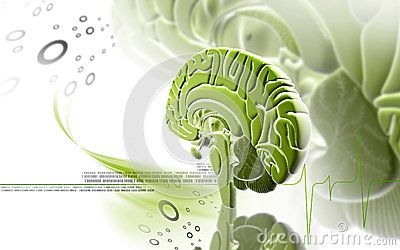 Brain Care Stock Photos, Images, & Pictures – (4,573 Images) - Page 13