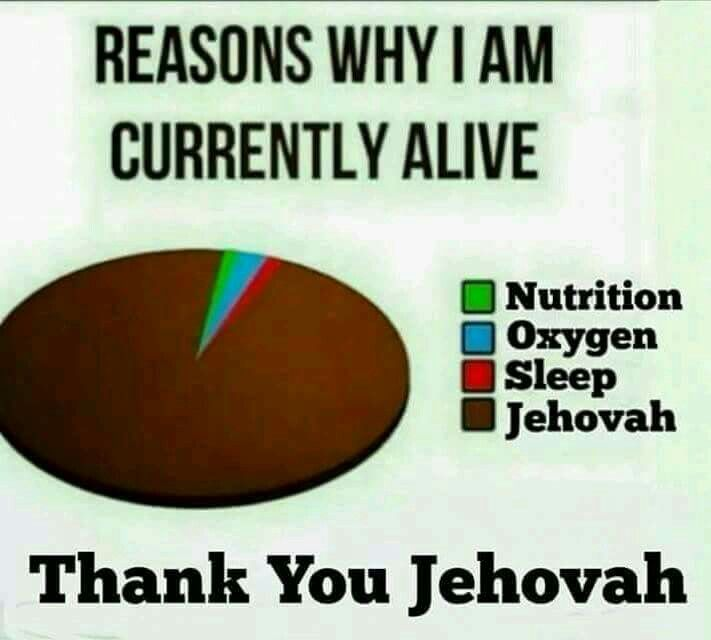 Reasons why I am currently alive. Thank you Jehovah.