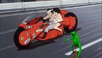 New trending GIF on Giphy. anime akira dat boi unicycle frog dat boi frog akira anime. Follow Me CooliPhone6Case on Twitter Facebook Google Instagram LinkedIn Blogger Tumblr Youtube