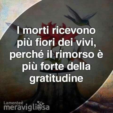 citate in italiana c'è rimpianto per ciò che si sarebbe potuto fare o cosa evitare  citate in italiana