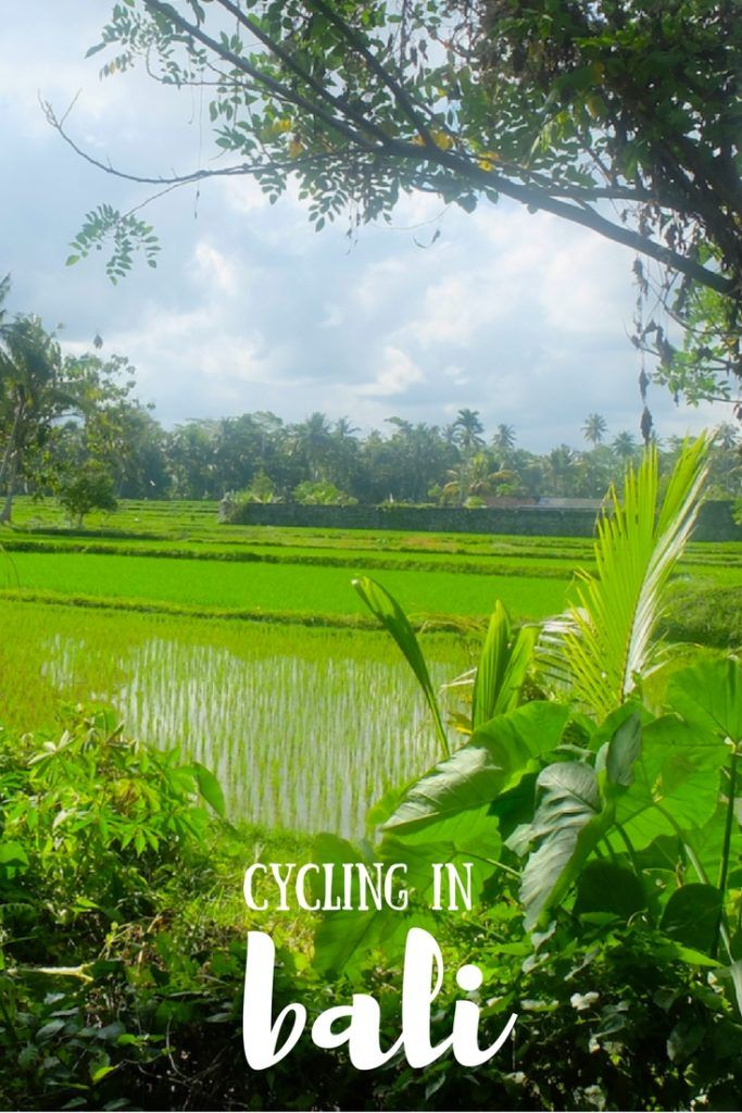 Cycling in Bali is one of the best things you can do in Ubud! Explore the rural side of Bali on an awesome, affordable cycling tour