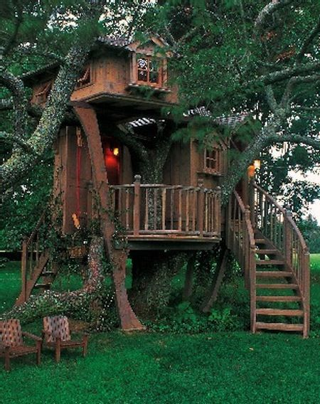 We need an area for Javin and Miles too:) Ben and James could build a killer tree house!
