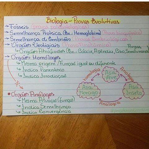 Biologia - provas evolutivas.