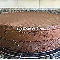 Génoise au chocolat moelleuse et super facile Bonsoir les amies ,je viens de publier la génoise natureet je tenais aussi à...