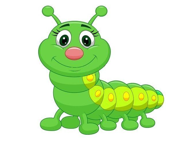 Картинки на прозрачном фоне для детей гусеница