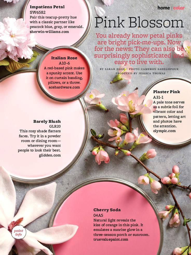 Rose Paint Color Paint Palette Pink Blossom Rose Color Paint For Bathroom With Images Baby Room Colors Pink Paint Colors Baby Girl Room Colors