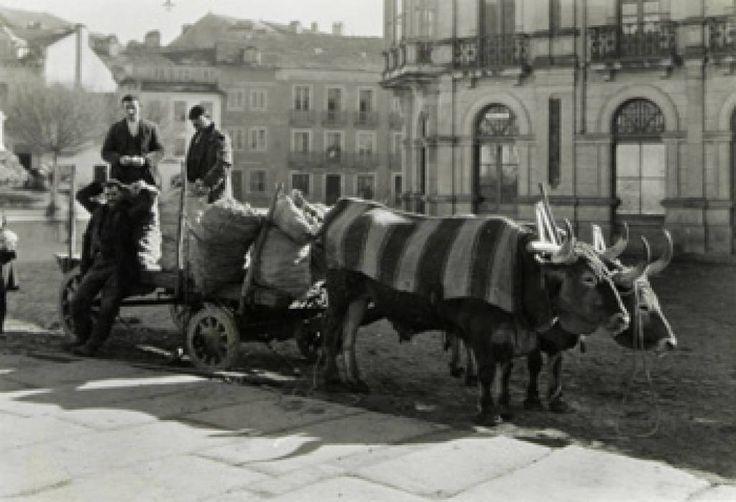 Carretas de Naranjas para el mercado de Lugo (1925) #FotoAntigua #OldPhoto