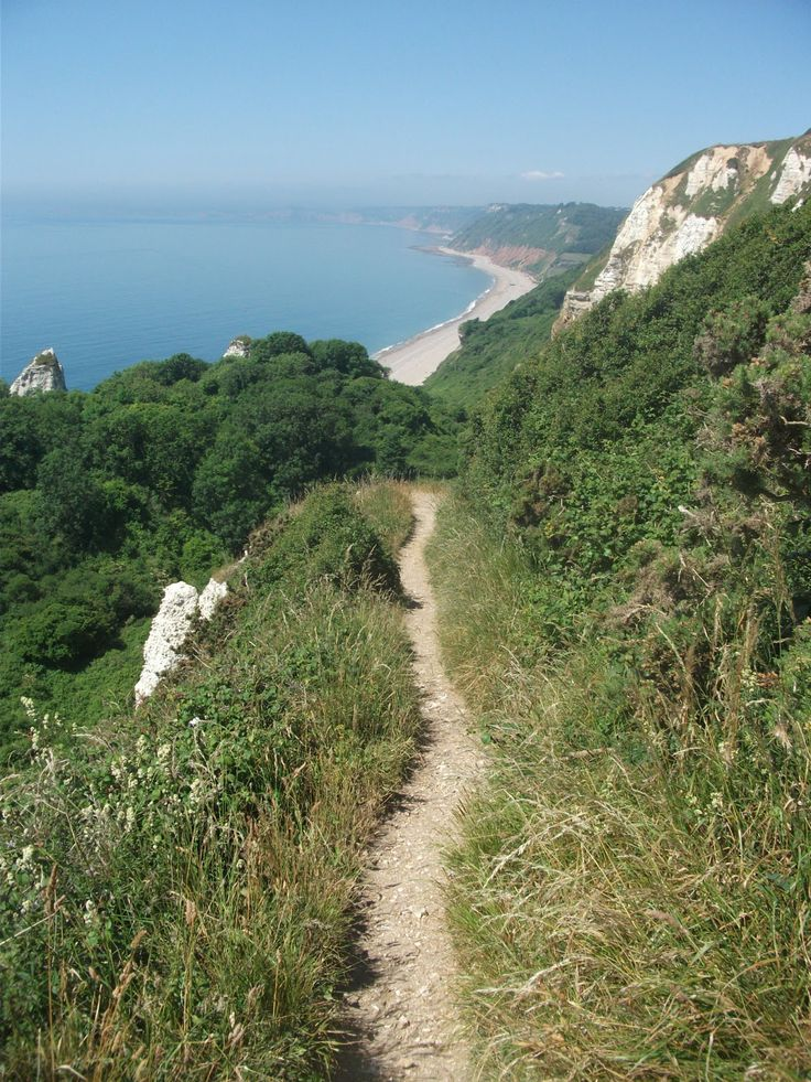 Looking West towards Branscombe along the South West Coast path | Devon | England