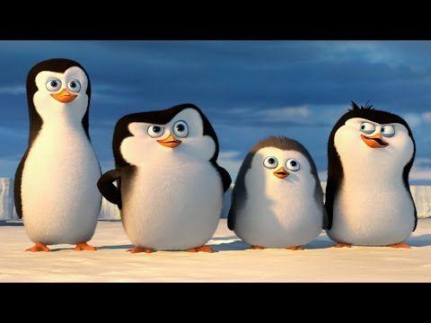 """DreamWorks: PINGWINY Z MADAGASKARU - film dokumentalny: """"Pingwiny z Antarktydy"""" - POLSKA - YouTube"""