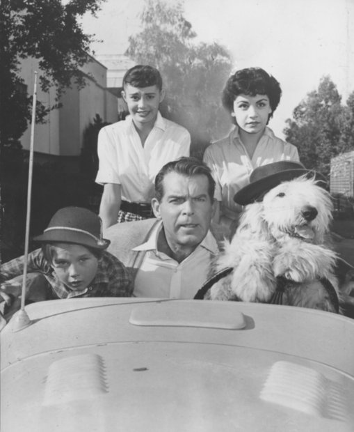 The Walt Disney Co. kept Funicello under contract after the cancellation of \The Mickey Mouse Club.\ Here she stars in 1959s \The Shaggy Dog,\ with Kevin Corcoran, left, Roberta Shore and Fred MacMurray.