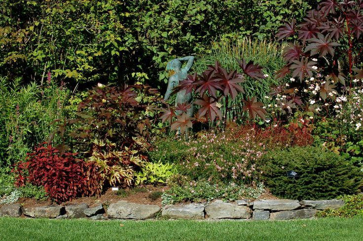 Landscape Borders Plants : Border tall grass evergreens picture of a mixed shrubs