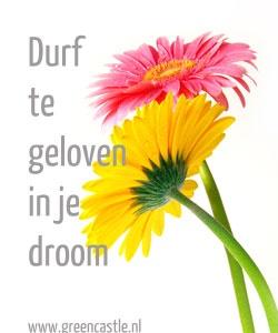 Blijf geloven in je droom  www.greencastle.nl