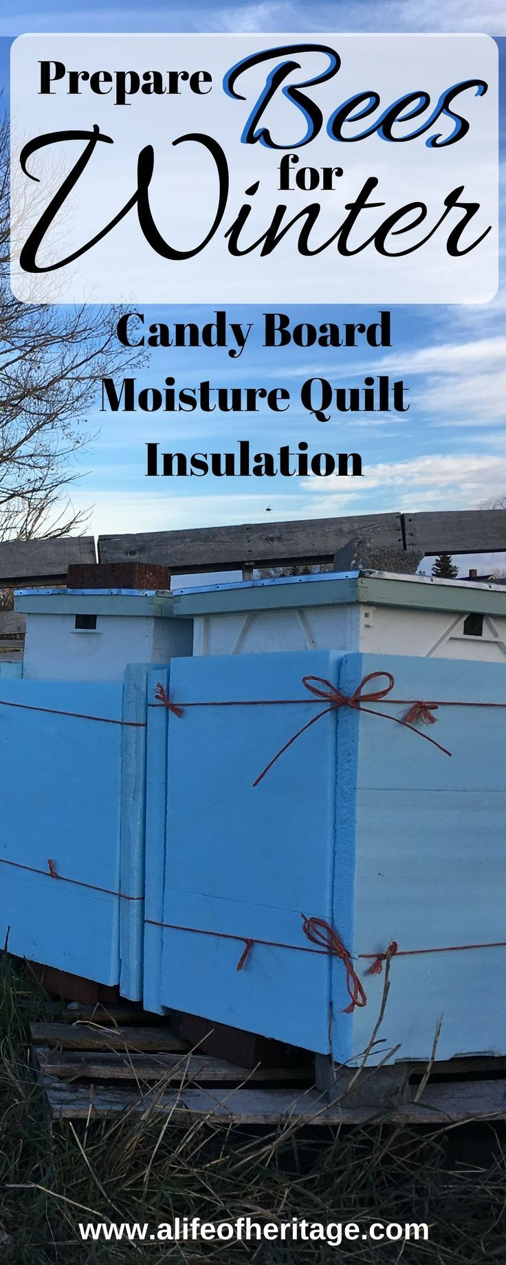 Bees in Winter: Do you have really cold, wet winters? Then consider making a candy board, moisture quilt and wrapping your hive with insulation!