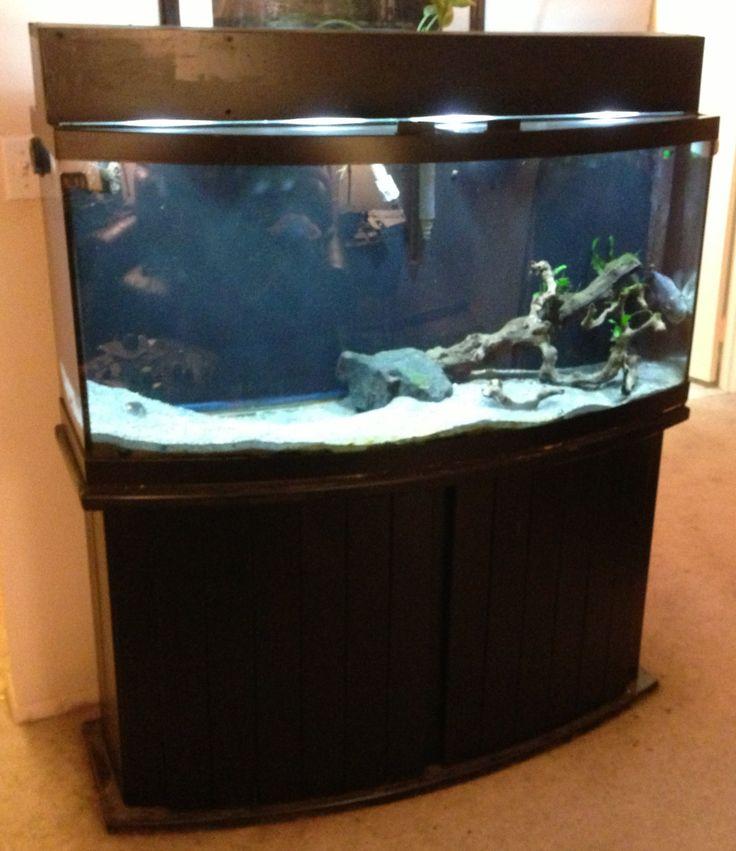 Aquarium Stands Design Ideas ~ http://www.lookmyhomes.com/choosing-the-aquarium-stands-of-metal-and-wood/