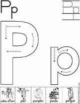 Best 25 Letter P Crafts Ideas On Pinterest Letter P