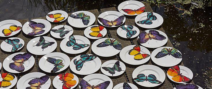 Bone China Butterfly Plates