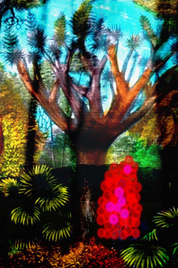 Digital Images - Jill Brailsford Fine Art