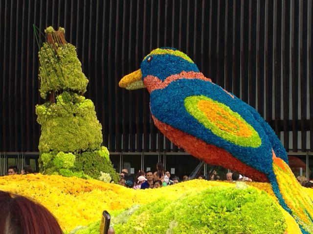 Medellin, feria de flores