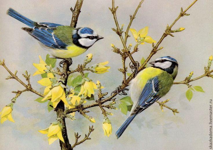 физкультурников картинки на тему весна синичка также крупнейший оздоровительный